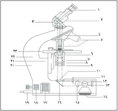 برش عرضی یک میکروسکوپ