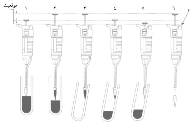 مراحل استفاده از پیپت